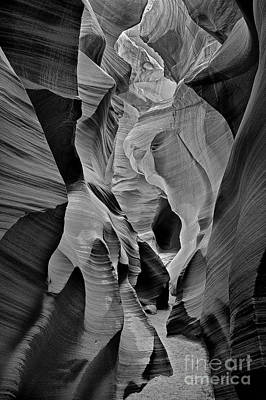 Food And Flowers Still Life Rights Managed Images - Lower Antelope Glow Black and White Royalty-Free Image by Jerry Fornarotto