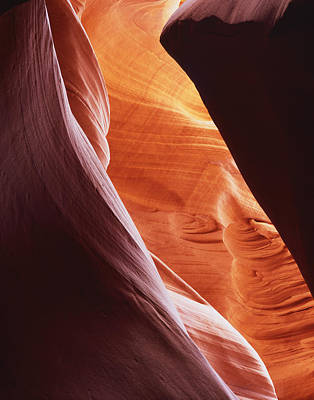 Photograph - Lower Antelope Slant by Tom Daniel
