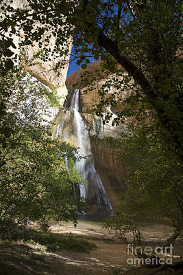 Photograph - Lower Calf Creek Falls by Jim West