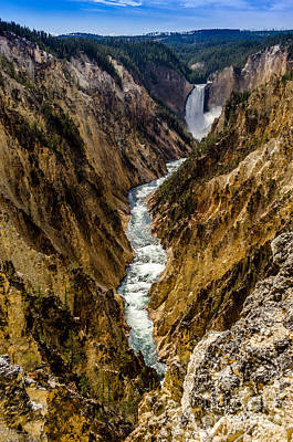 Photograph - Lower Falls Of Grand Canyon Of Yellowstone by Debra Martz