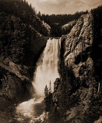 Yellowstone Drawing - Lower Falls Of Yellowstone, Wyoming, National Parks & by Litz Collection