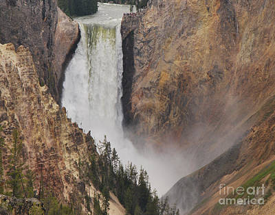Photograph - Lower Falls - Yellowstone by Mary Carol Story