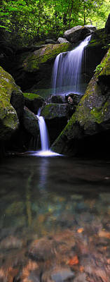 Photograph - Lower Grotto Falls - Verticle by Expressive Landscapes Fine Art Photography by Thom