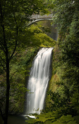 Photograph - Lower Multnomah Falls by Jon Ares