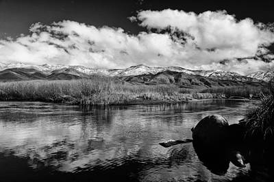 Lower Owens River Art Print by Cat Connor