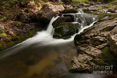 Photograph - Lower Pup Creek Falls by Paul Rebmann