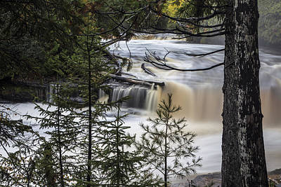 Photograph - Lower Tahquamenon Falls And Trees by John McGraw