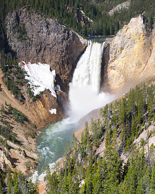 Photograph - Lower Yellowstone Falls by Aaron Spong