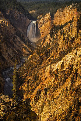 Lower Yellowstone Falls Art Print by Andrew Soundarajan