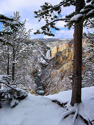 Photograph - Lower Yellowstone Falls In October by Robert Woodward
