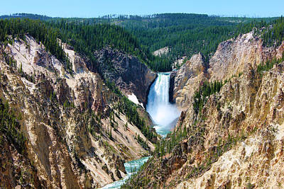 Lower Yellowstone Falls Art Print