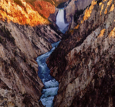 Photograph - Lower Yellowstone Falls  by Vishwanath Bhat