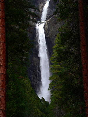 Photograph - Lower Yosemite Falls by Jeff Lowe
