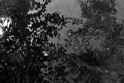 Photograph - Lowflow by Randal Bruck