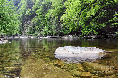 Photograph - Loyalsock 2 by Doug Heavlow
