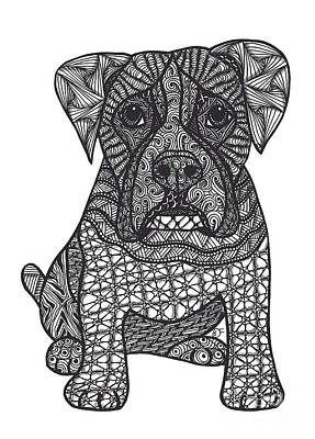Drawing - Loyalty- Boxer Dog by Dianne Ferrer