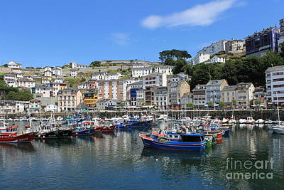Photograph - Luarca Harbor by Ines Bolasini
