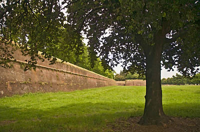 Photograph - Lucca Walls by Mick Burkey