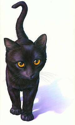 Black Cat Photograph - Lucky Cat by Andrew Farley