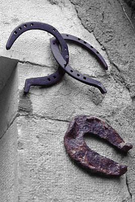 Photograph - Lucky Horseshoe by Dragan Kudjerski