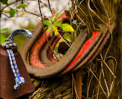 Photograph - Lucky Horseshoes by Jordan Blackstone
