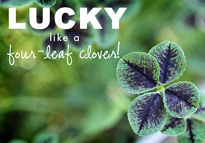 Lucky Like A Clover Art Print by Nancy Ingersoll