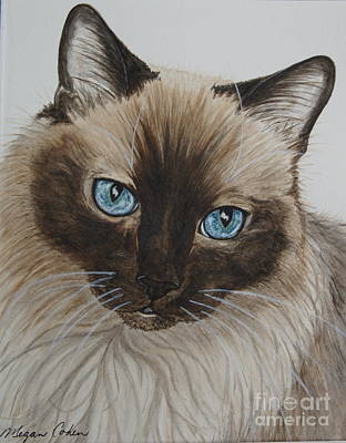 Pet Portraits Painting - Lucky by Megan Cohen