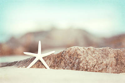 Beach Photograph - Lucky Star by Carolyn Cochrane