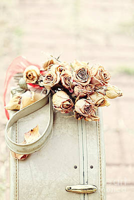Luggage And Dried Roses Print by Stephanie Frey