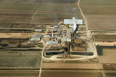 Photograph - Lula Sugar Factory by Ronald Olivier