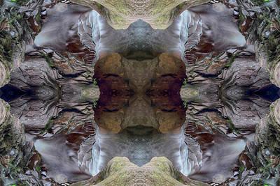 Photograph - Lullaby by Dawn J Benko