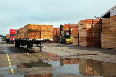 Lumber Cargo Art Print