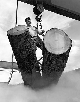 Strong America Photograph - Lumber Mill Worker by Underwood Archives