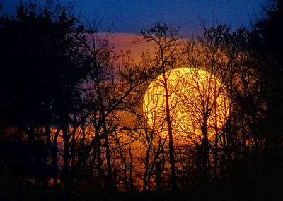 Luna Photograph - Luminescence by Bill Pevlor