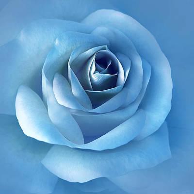 Photograph - Luminous Blue Rose Flower by Jennie Marie Schell