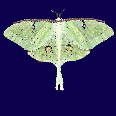 Digital Art - Luna Moth Pixel Pointillized  by R  Allen Swezey
