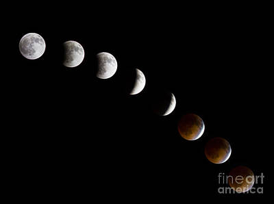 Lunar Eclipse Art Print by Inge Johnsson