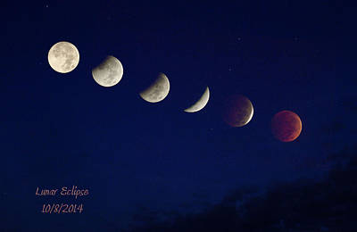 Photograph - Lunar Eclipse by Robert Camp