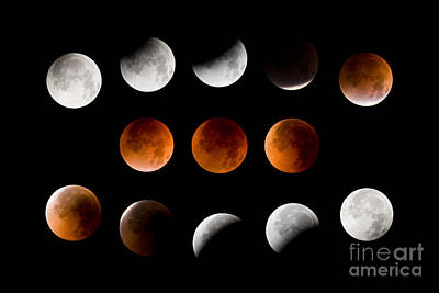 Lunar Eclipse Sequence Art Print by Sean Bagshaw