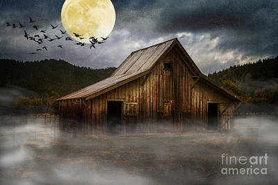 Photograph - Lunar Migration by Randy Wood