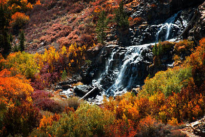 Photograph - Lundy Canyon Falls by Lynn Bauer