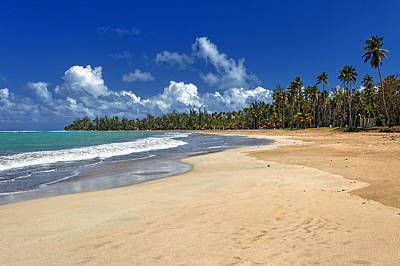 Luquillo Beach Art Print by George Oze