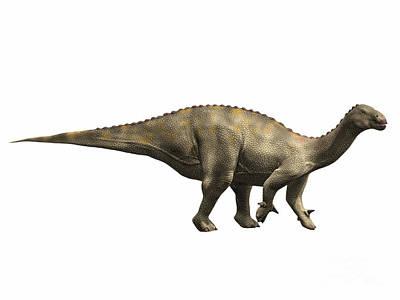 Prehistoric Digital Art - Lurdusaurus Arenatus, Early Cretaceous by Nobumichi Tamara