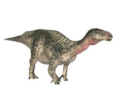Paleozoology Photograph - Lurdusaurus Dinosaur by Friedrich Saurer