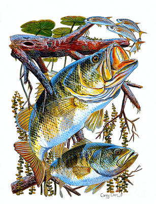 Pickerel Painting - Lurking Bass by Carey Chen