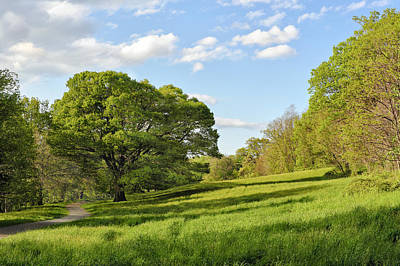 Photograph - Lush Green Spring Landscape by Marianne Campolongo