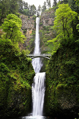 Photograph - Lush Green Multnomah Falls Waterfall by Athena Mckinzie