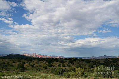 Photograph - Lush Southwest by Susan Herber