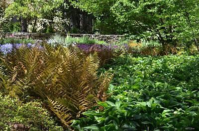 Photograph - Lush Spring Garden by Maria Urso