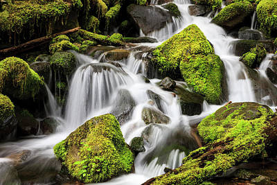 Olympic National Park Photograph - Lush Waterfall Olympic National Park by Tom Norring